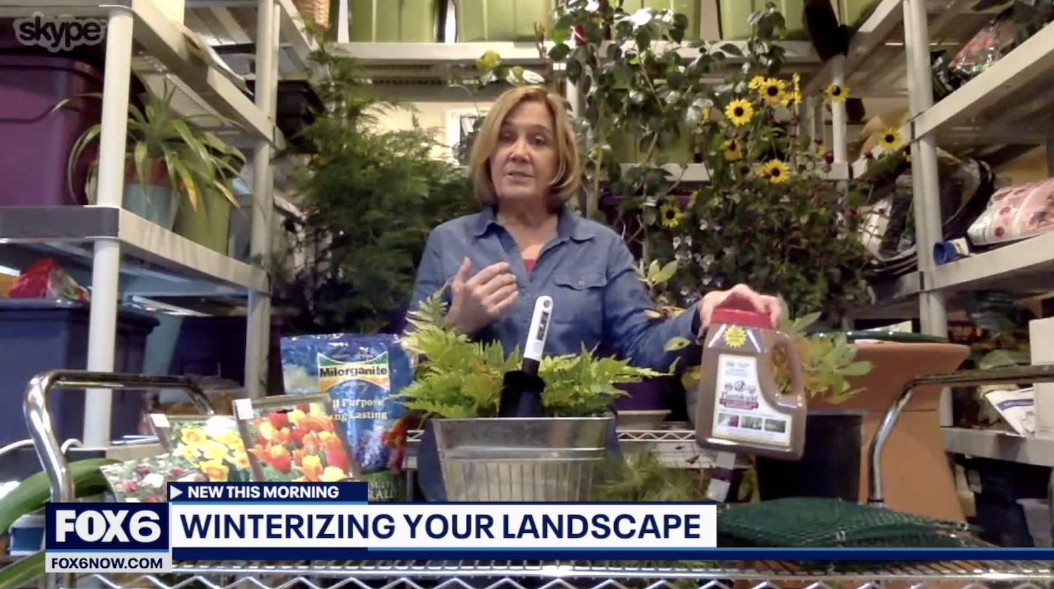Melinda Myers on FOX6 WakeUp with tips on winterizing your landscape. Use Plantskydd to protect your plants from deer, rabbits and voles overwinter.